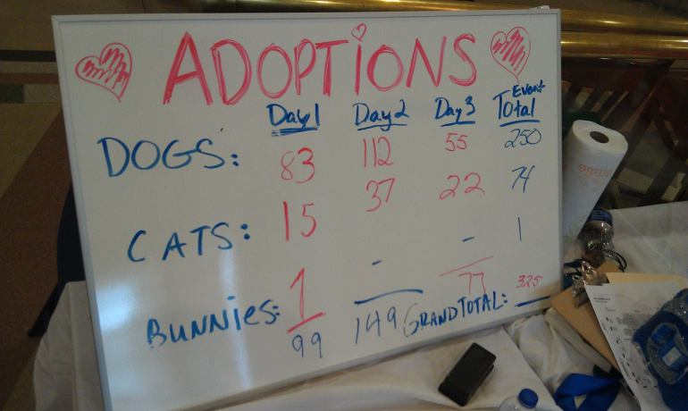 Pet Super Adoption